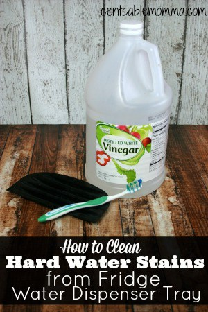 How To Clean The Fridge Water Dispenser Tray Centsable Momma