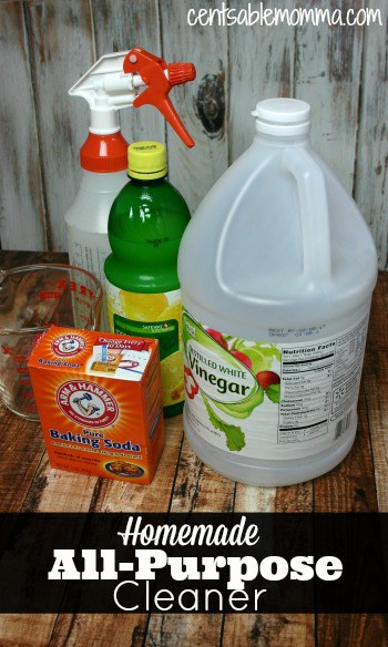 Homemade All Purpose Cleaner Centsable Momma
