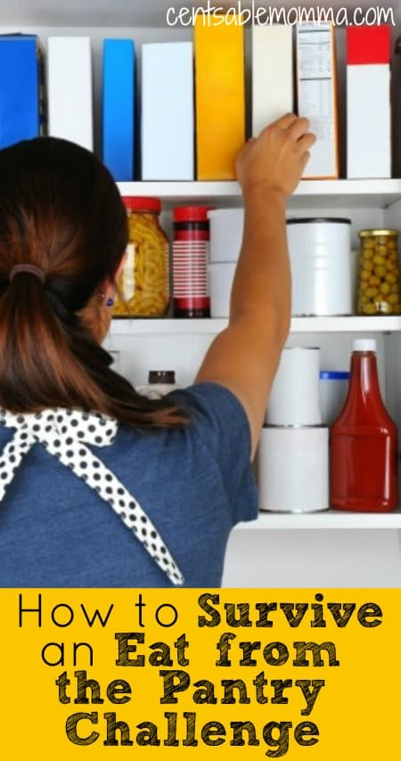 If you need to save some money quickly for Christmas shopping, an emergency fund, or just plan to have a no-spend month, one way to save money is to plan your meals from the food you already have on hand in your pantry.  Check out these 5 tips for how to survive an Eat from the Pantry Challenge.